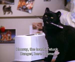 salem, sabrina the teenage witch, and funny image