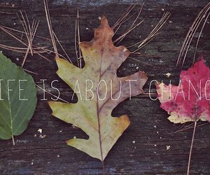 change, life, and leaves image