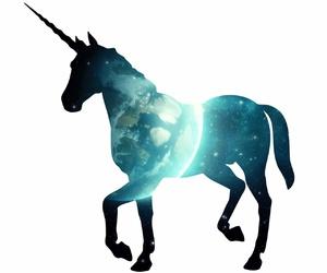 unicorn and wallpaper image