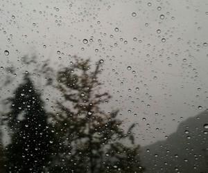 fall and rain image