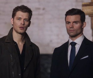 The Originals, niklaus mikaelson, and daniel gillies image