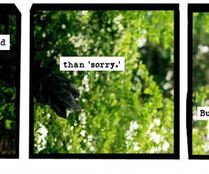 a softer world, sorry, and text image