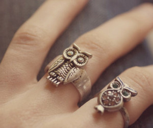 owl, ring, and rings image