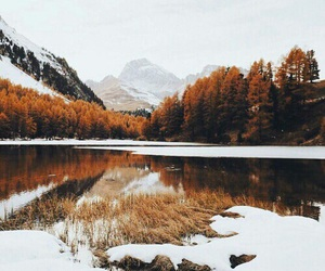 autumn, snow, and nature image