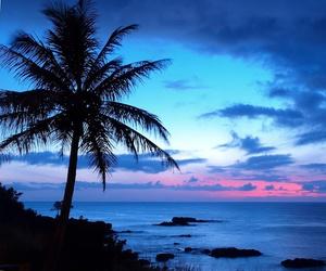 beach, happiness, and hawaii image