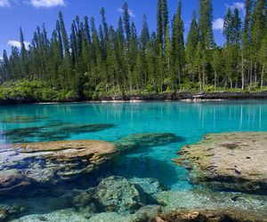 france and new caledonia image