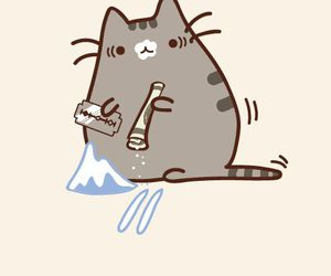 cat, drugs, and pusheen image