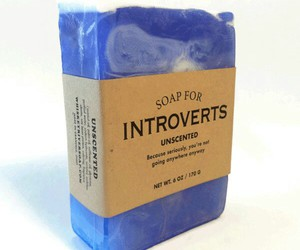 funny, introverts, and funny gifts image