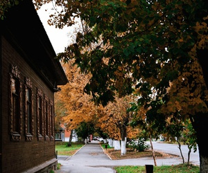 aesthetic, architecture, and autumn image
