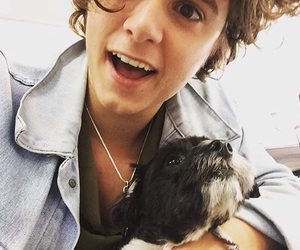 the vamps, bradley simpson, and brad simpson image