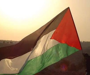 palestine and flag image