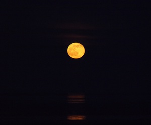 cruise, moon, and love image