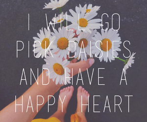 daisies, happiness, and heart image