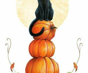 cat, Halloween, and autumn image