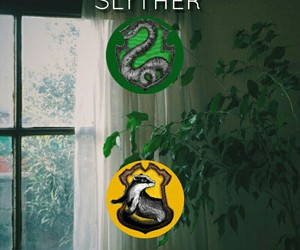 harry potter and slytherpuff image