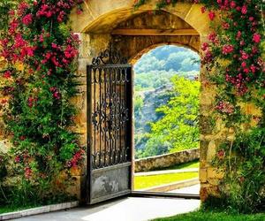 nature, door, and flowers image