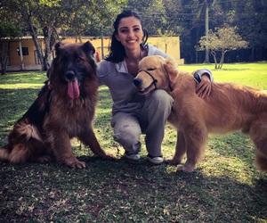 dog, golden retriever, and me image