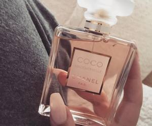 chanel, chanel n5, and coco chanel image