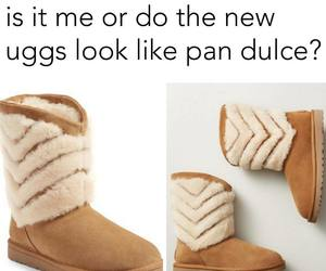 pan dulce, funny, and lol image
