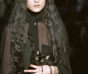 cat, fashion, and black image