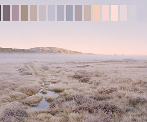 nature, colors, and pastel image