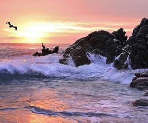 beach, sunrise, and ocean image