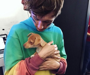troye sivan, dog, and puppy image