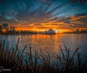 australia, landscape, and sunrise image