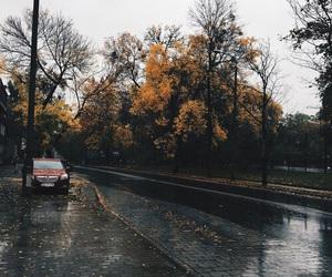 rain, autumn, and leaves image