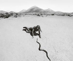 Image by Aida Moreno