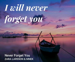 i will never forget you image