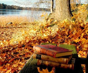 autumn, books, and red image