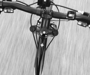 autumn, b&w, and bike image