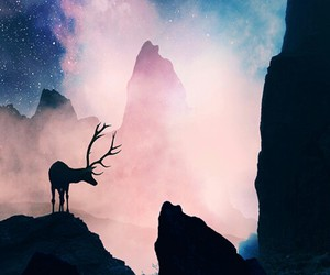 deer, galaxy, and sky image