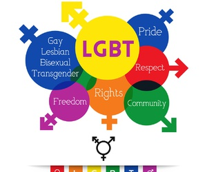 bisexual, freedom, and gay image