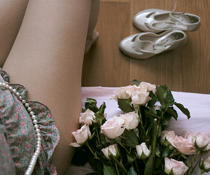 flowers, rose, and legs image