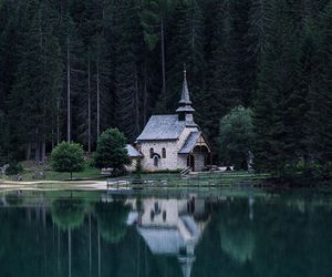 forest, italy, and lake image