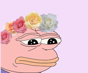 pepe, meme, and aesthetic image