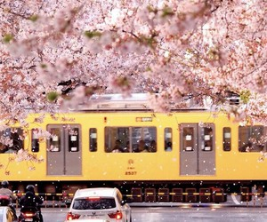 cars, japan, and people image