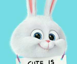 cute, wallpaper, and bunny image