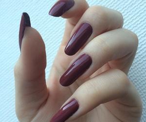 glam, long nails, and nails image