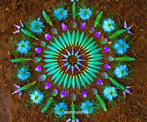 flower, mandala, and green image