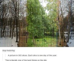 season, summer, and winter image