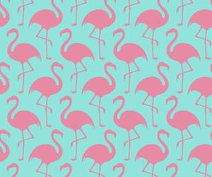 flamingo and pattern image