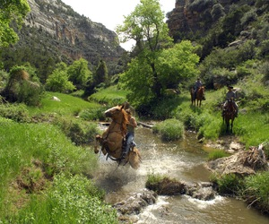 horses and ranch image