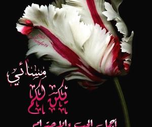 مسائي and مساء الخير image