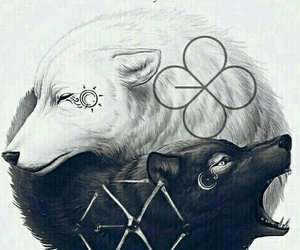 black, wolf, and love image