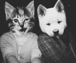 cat, dog, and black and white image