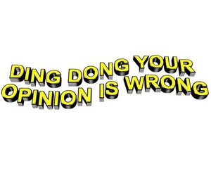 bitch, dong, and opinion image