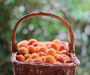 fruit, peach, and apricot image
